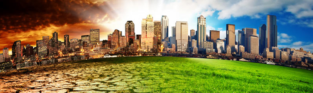 comparativa aislantes térmicos ecológicos